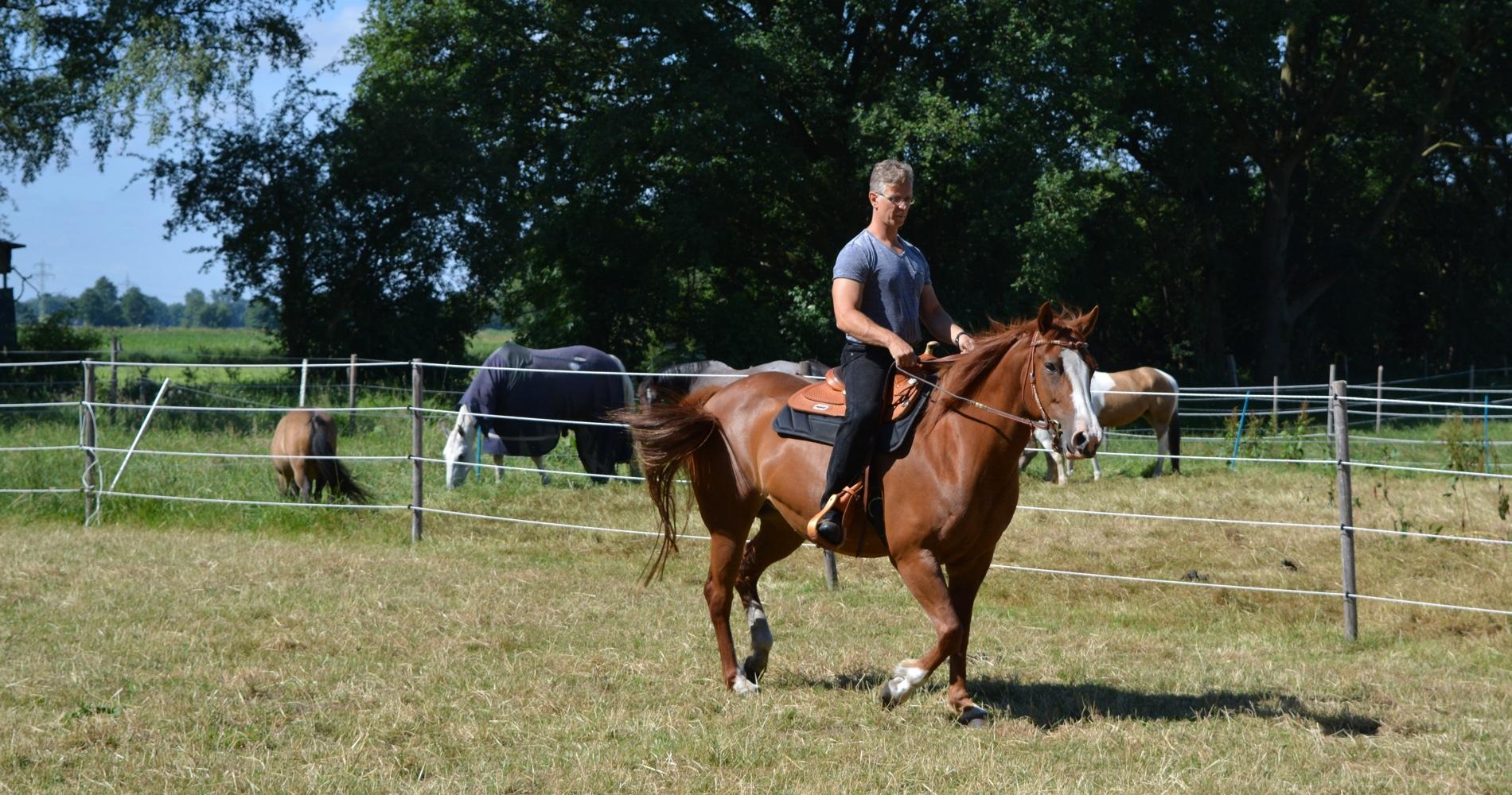 Beritt von Pferden